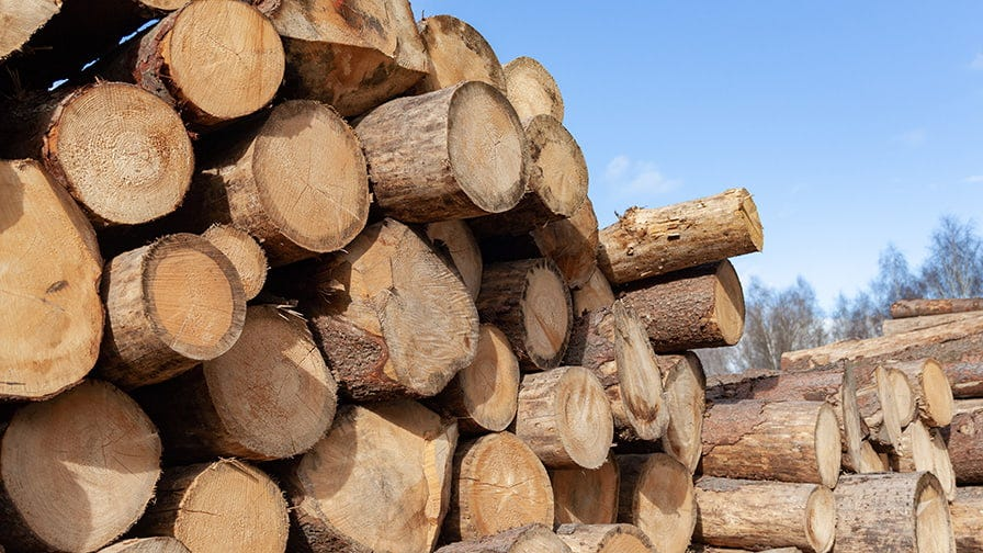 Log pile prepared for sawmilling