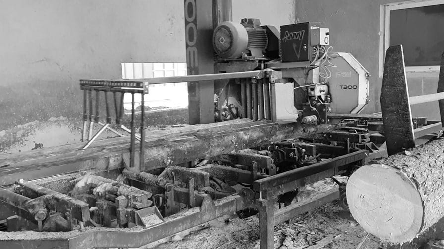 Wood-Mizer LT300